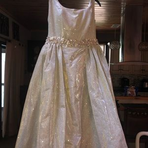 Homecoming or Prom dress worn once